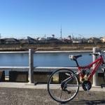 2017年は帝釈天にフェラーリ自転車で初詣です。